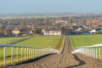 The Warren Hill racehorse training gallops at Newmarket, England.