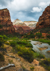 Virgin River and sandstone cliffs above, Zion National Park, Utah