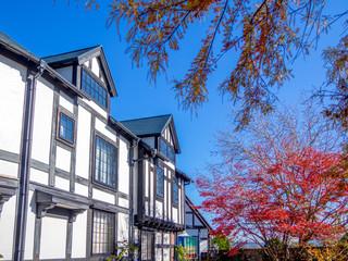 【静岡県伊豆市】秋のテーマパーク風景【修善寺虹の郷】
