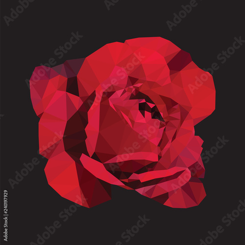 Dark red rose flower wallpaper on black background. Purple flora plant geometric banner graphic. Magenta low polygon backdrop.