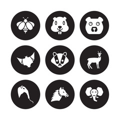 9 vector icon set : Bee, Beaver, Anteater, Antelope, Badger, Bear, Bat, Alpaca isolated on black background