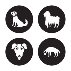 4 vector icon set : Berger Picard dog, Beauceron Bergamasco Beagle dog isolated on black background