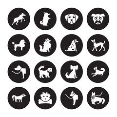 16 vector icon set : Rhodesian Ridgeback dog, Newfoundland Norfolk Terrier Nova Scotia Duck Tolling Retriever Otterhound Mudi Poodle dog isolated on black background