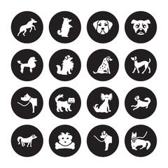 16 vector icon set : Rhodesian Ridgeback dog, Newfoundland Norfolk Terrier Nova Scotia Duck Tolling Retriever Otterhound Mudi Poodle dog isolated on black background