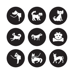 9 vector icon set : Pitbull dog, Pekingese Newfoundland Norfolk Terrier Nova Scotia Duck Tolling Retriever Papillon Otterhound Mudi dog isolated on black background