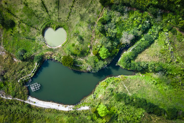 high angle photo of heart and fish shaped pond in the green park
