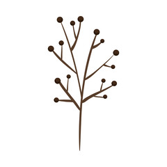 branch plant dry icon