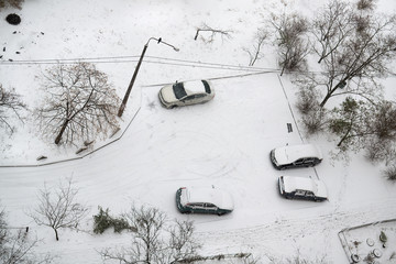 Cars in parking are covered snow
