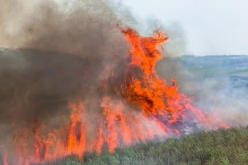 Fire Flames Crops Farm