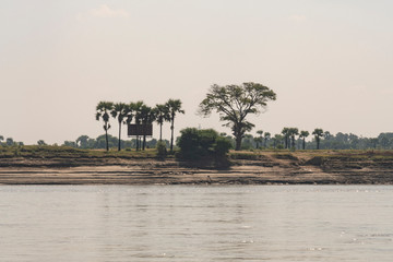 Costa de un río con árboles de un río en Myanmar