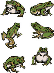 Frog, reptile, options, illustration, black, color, vector