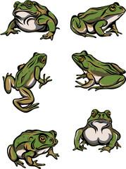 Frog, reptile, options, illustration, black, color, vector