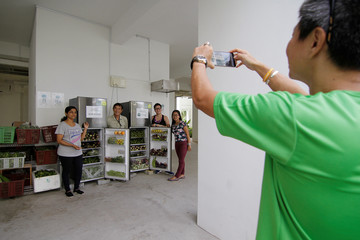 Freegan Ronald Lim takes a photo of resident volunteers after they filled up community fridges with rejected produce which residents can take for free, in Singapore