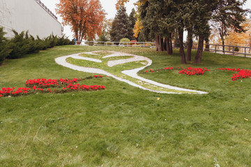 The decorated green lawn in the form of a leaf of a plant