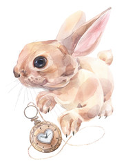 Cute bunny with old style pocket watch. Watercolor illustration.