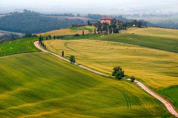 Obraz Cudowny mglisty krajobraz Toskanii z zakrzywioną drogą i cyprysami, Włochy - fototapety do salonu