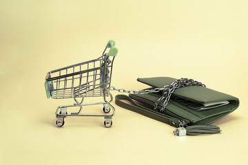 shopping cart pulls on the chain to the store for shopping women wallet