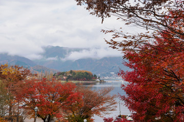 Fall at Lake Kawaguchi, Japan