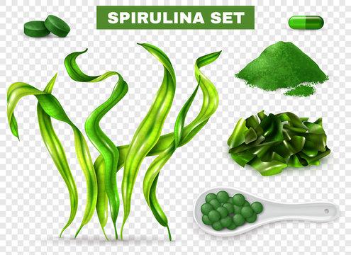 Spirulina Realistic Transparent Set