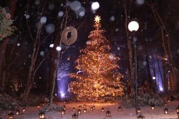 ホワイトクリスマス/雪が降るクリスマスの灯り