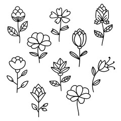 Flowers set. Set of thin line flowers isolated on white background. Floral elements. Vector illustration.