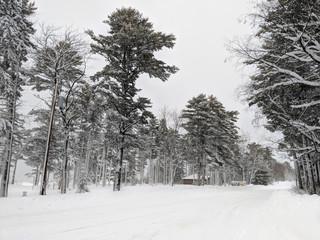 Wall Mural - Ontonagon Township Park Snowstorm