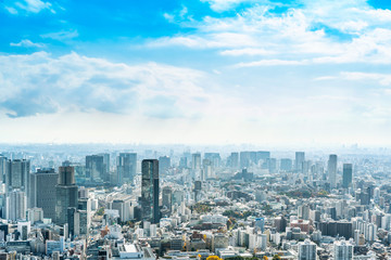 Wall Mural - urban city skyline aerial view in Tokyo, Japan