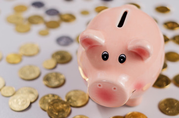 pink pig moneybox and coins 2