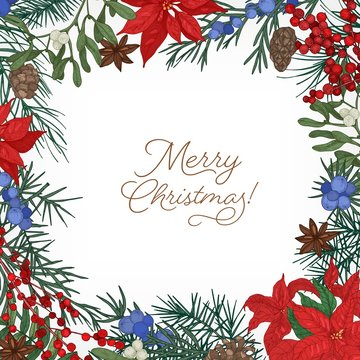 Square frame or border made of branches and cones of coniferous trees, poinsettia leaves, juniper and mistletoe berries hand drawn on white background and Merry Christmas wish