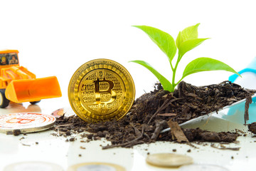 Bitcoin crypto currency grow excavation investment concept.Digital currency in new ways that investors can find with computer technology.