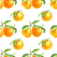 orange tangerine drawing in watercolor