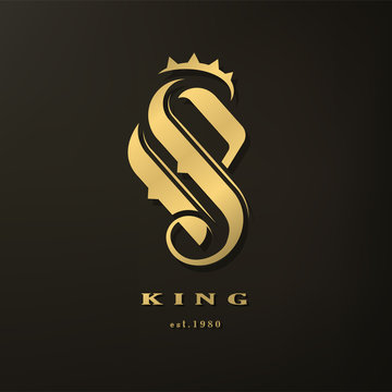 Abstract lion logo,symbol vintage style on a dark background.