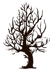 Black vector contour of deciduous simple twisted stumpy tree without leaves object isolated on white background