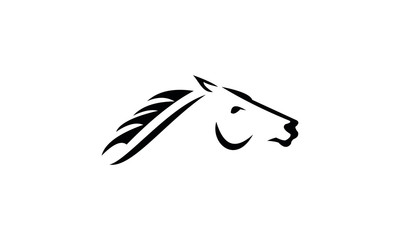 hand drawn illustration of horse