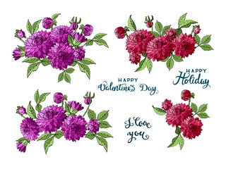Set of multicolored bouquets of dahlia garden flowers isolated on white background and lettering, vector