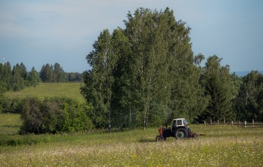 Tractor in the field. Work in the fields. Tractor mows the grass. Summer in the fields. Transport in the summer fields. Field, forest, work.