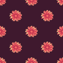 Seamless pattern with pink and orange daisy flowers on dark violet background