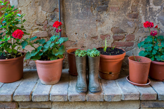 Flowers planted in the old resin boots