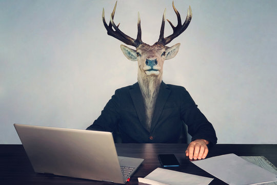 male business man with deer head on a blue background in the office at the Desk. concept of irrational management. stupid employees and employees in the company and morons deputies in the government