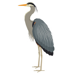 Forest Wild Life Isolated vector animals Geometric Great blue heron