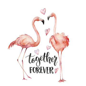 Watercolor Together forever card. Hand painted Flamingo couple with hearts and lettering isolated on white background. Holiday illustration for design, print, background. Love concept