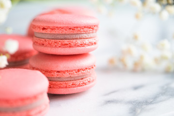 Coral cakes macarons or macaroons on white marble. Spring background, copy space.