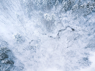 Aerial winter forest view. Drone landscape, fly above. White trees with snow, beautiful wallpaper background. High modern photography.