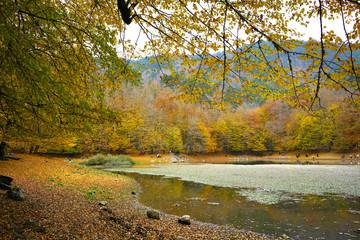 autumn in the Yedigoller park, Bolu