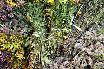 Dried herb oregano, thyme and tutsan. Close-up.