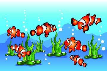 Clown fish cartoon