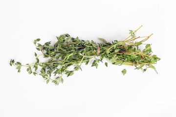 Thyme leaf Herb green fragrant branch on white background
