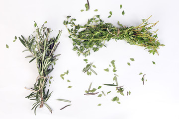 Rosemary Thyme green herb bundle on white background