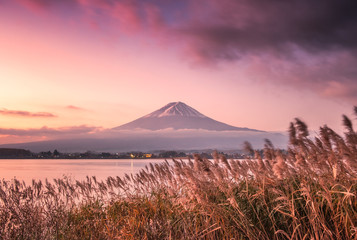 Colorful sky with Fuji mountain and golden meadow