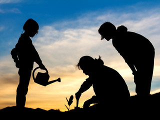 Silhouettes of people group watering young baby plants growing in germination sequence on fertile soil at sunset background